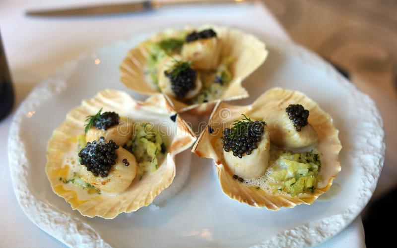 Escallops用在特别调味汁优质膳食,豪华膳食独特的烹调的鱼子酱在VIP有国际水平的厨师的美食术餐馆 库存照片