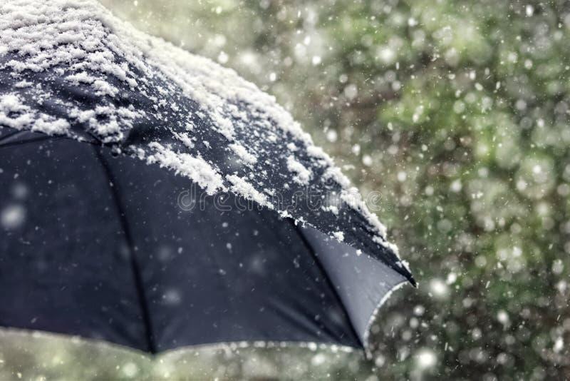 Escamas de la nieve que caen en un paraguas negro imágenes de archivo libres de regalías