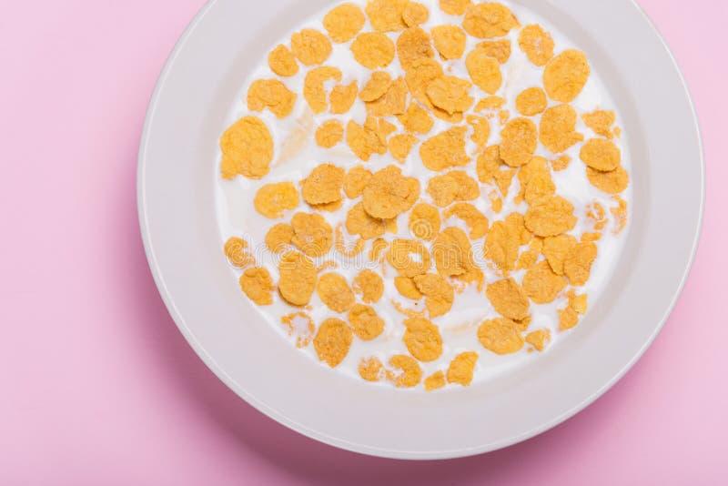 Escamas del amarillo Girasol con las escamas y la leche El desayuno dulce forma escamas en una placa blanca Fondo rosado fotografía de archivo