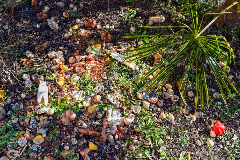 Escaninho de adubo no jardim Adubando a pilha dos ovos, as frutas e legumes desfazem-se imagens de stock