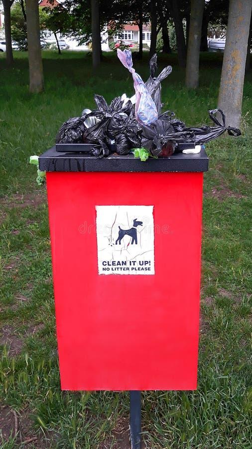 Escaninho de desperdício de transbordamento do cão no parque imagens de stock