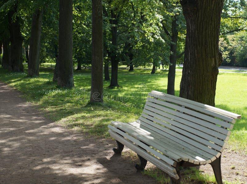 Escantillón de madera blanco cerca de un sendero en un parque del verano fotografía de archivo libre de regalías