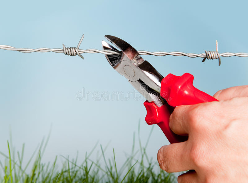 Escape through barbed wire. Hand cutting barbed wire to escape for freedom stock image