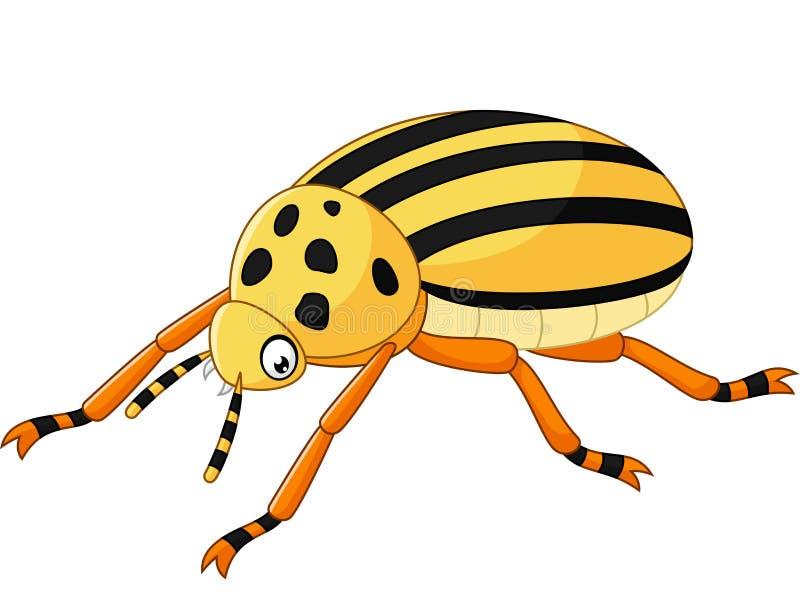 Escarabajo de la historieta aislado en el fondo blanco stock de ilustración