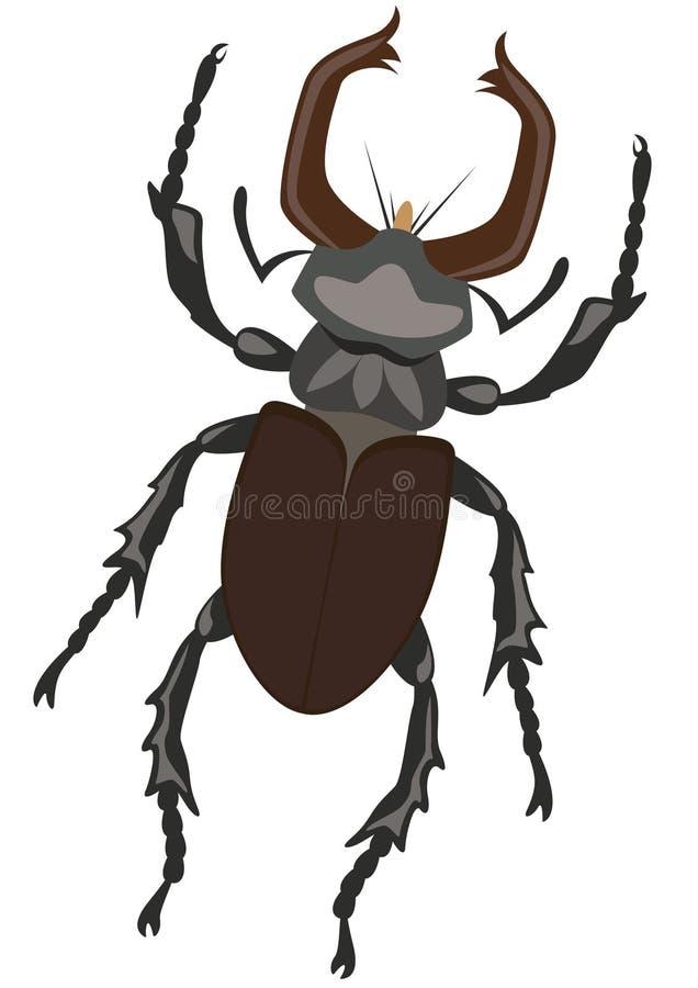 Escarabajo de macho ilustración del vector
