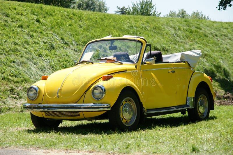 Escarabajo de Volkswagen fotos de archivo