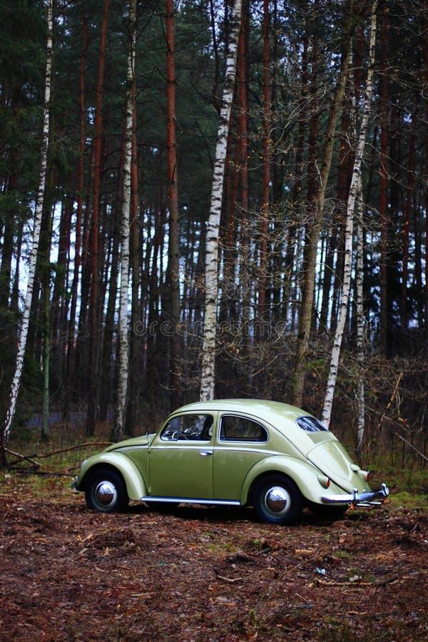 Escarabajo 1957 de VW imagen de archivo