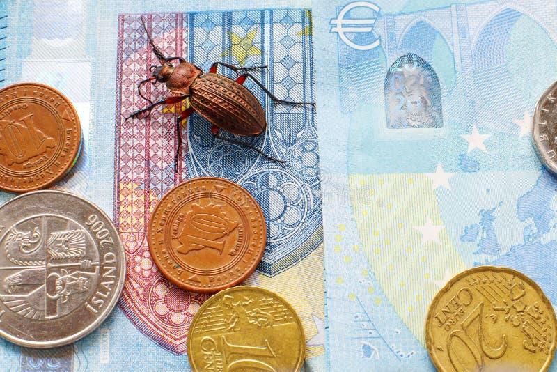 Escarabajo molido en la cuenta veinte euros, peque?as monedas de Europa fotos de archivo libres de regalías