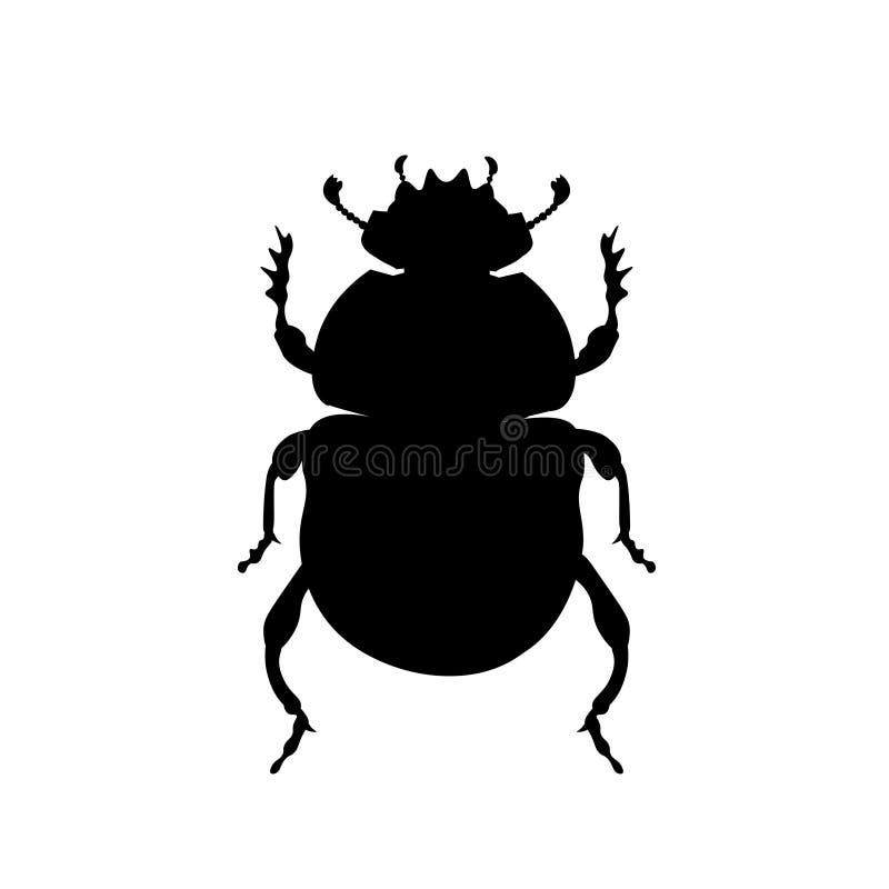 Escarabajo sagrado del escarabajo ilustración del vector