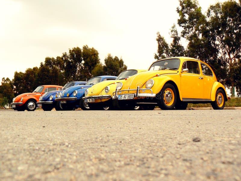 Escarabajos de Volkswagen en fila imagen de archivo libre de regalías