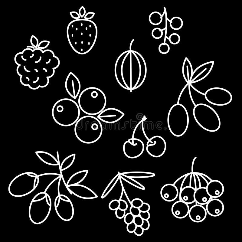 Escaramujo determinado del icono de las bayas de Superfood, fresa, acai, frambuesa, Juniperus, arándano, espino cerval de mar, ce libre illustration