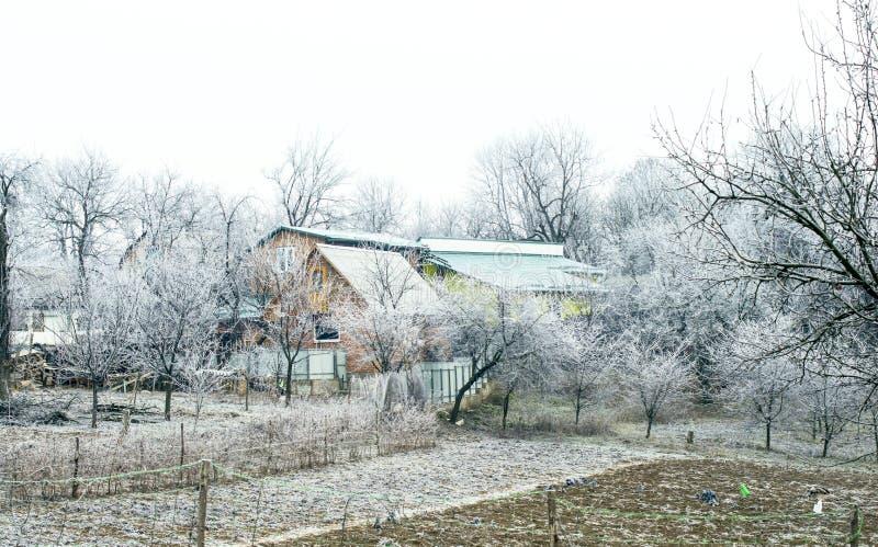 Download Escarcha Blanca En árboles En El Campo Foto de archivo - Imagen de paisaje, tiempo: 64200736