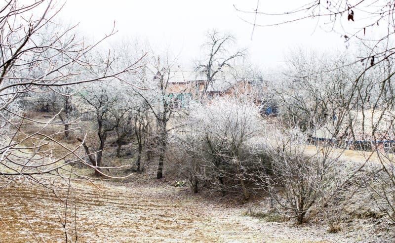 Download Escarcha Blanca En árboles En El Campo Foto de archivo - Imagen de hoarfrost, estación: 64200748