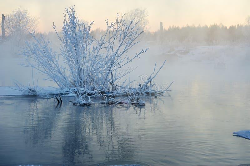 A escarcha macia no nascer do sol do rio fotografia de stock