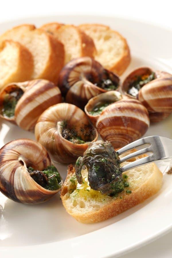 Escargot, caracóis um bourguignonne do la fotos de stock royalty free