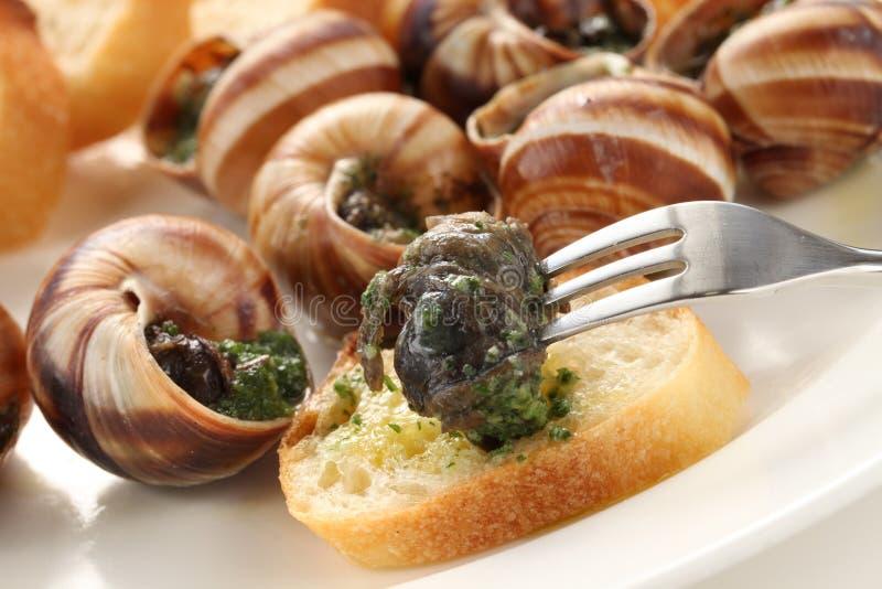 Escargot, caracóis um bourguignonne do la imagens de stock