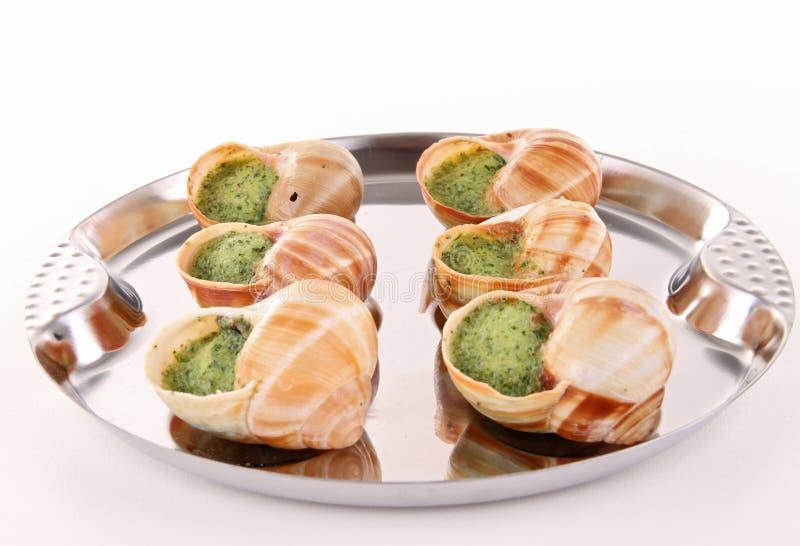 Escargot, caracol de bourgogne fotos de stock royalty free