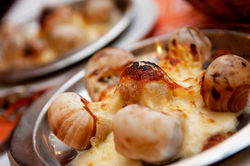 Escargot With Cheese royalty free stock images