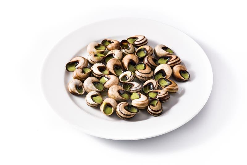 Escargot de Bourgogne imagem de stock