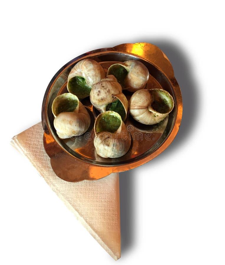 Escargot, Franse delicatesse, geïsoleerd stock foto