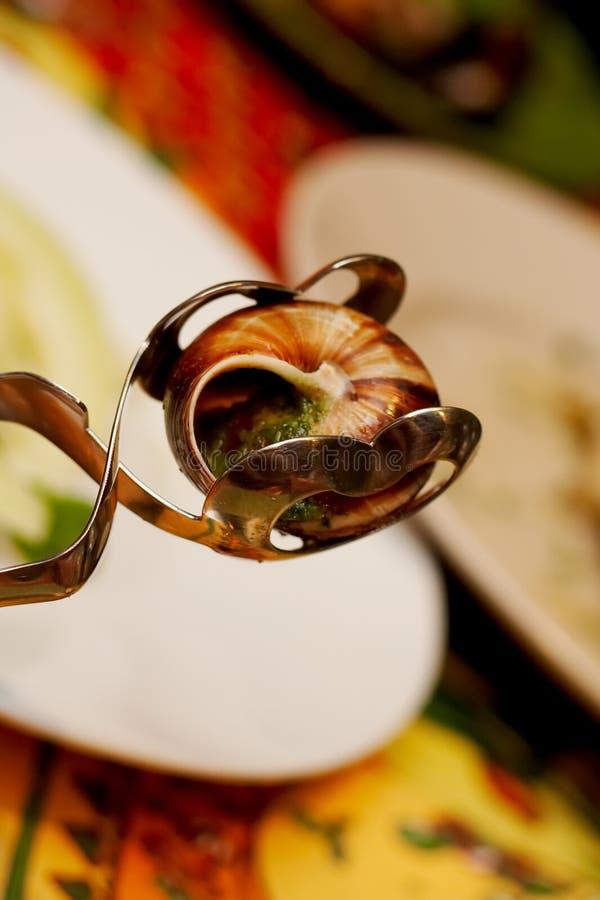 Escargot frit photos stock
