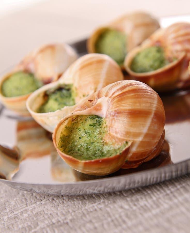 Escargot, snailn de bourgogne imagens de stock