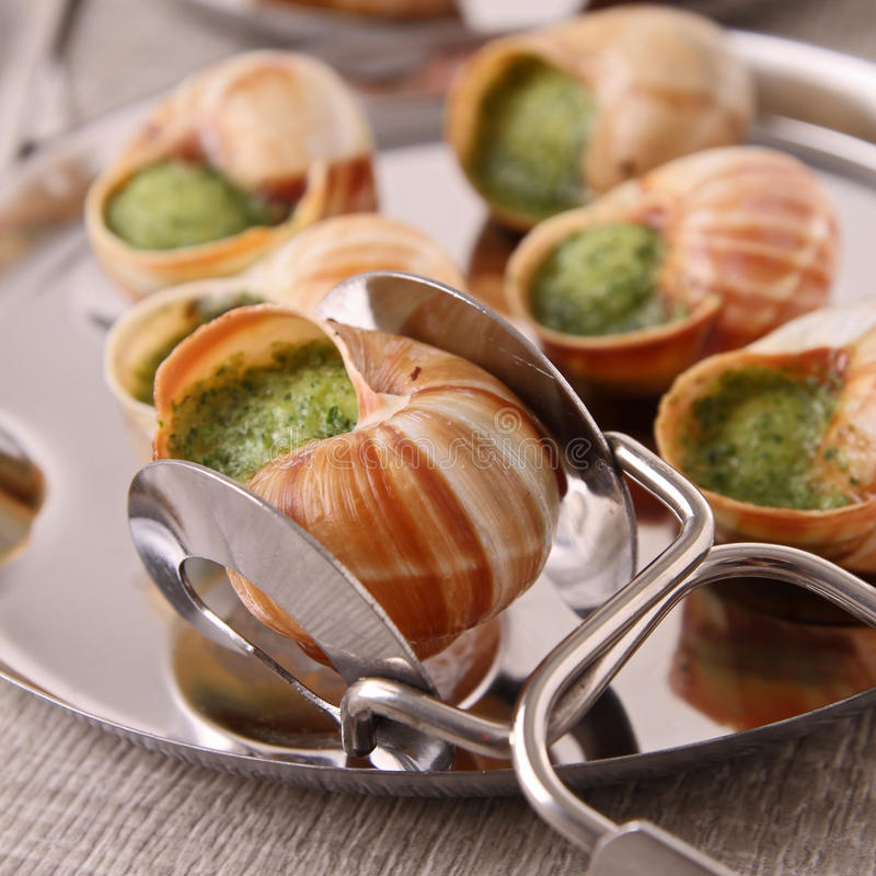 Escargot, snailn de bourgogne imagens de stock royalty free