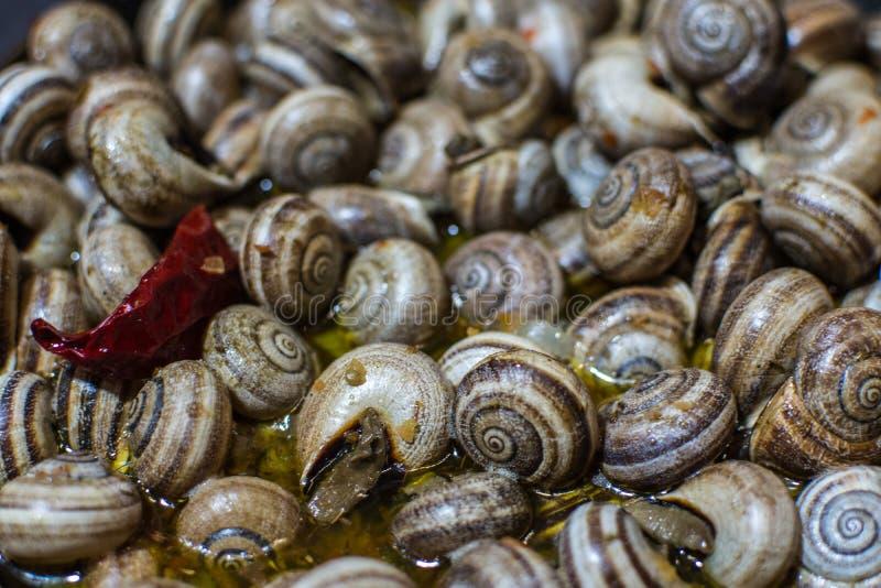 Escargot, um prato de caracóis de terra cozinhados imagem de stock royalty free