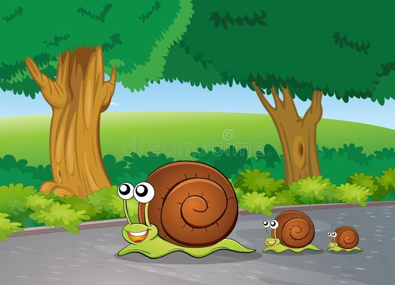 Escargots à la route illustration stock