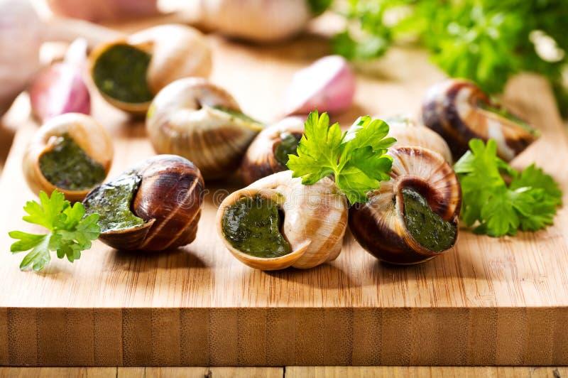Escargots avec le persil photographie stock