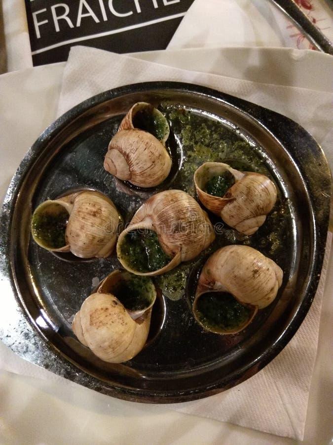 Escargots bourguignons du plat images stock