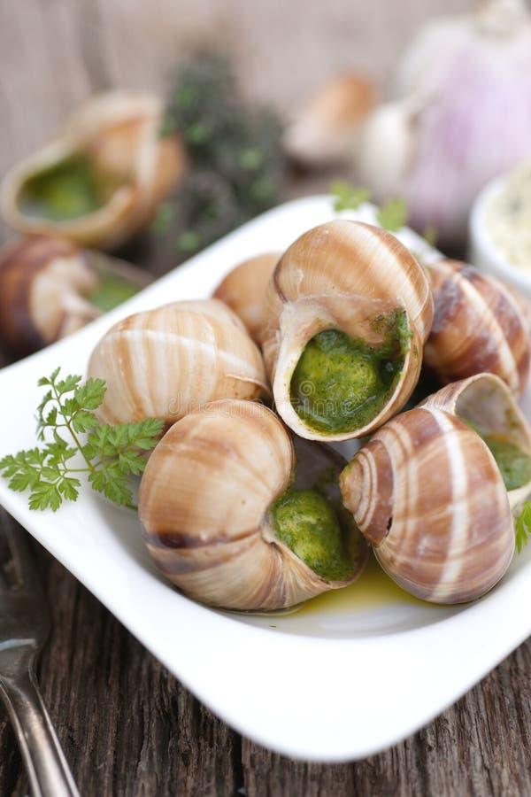 Escargots de vigne image libre de droits