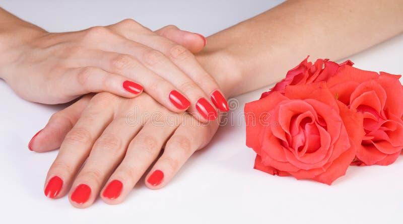 Escarlate do manicure e as rosas imagens de stock