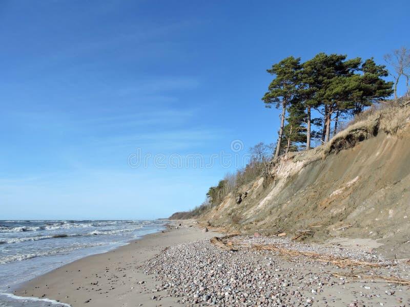 Escarpa en la costa de mar Báltico, Lituania fotos de archivo libres de regalías