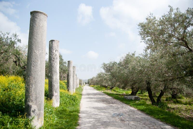 Ruínas antigas da arqueologia de Sebastia fotos de stock royalty free