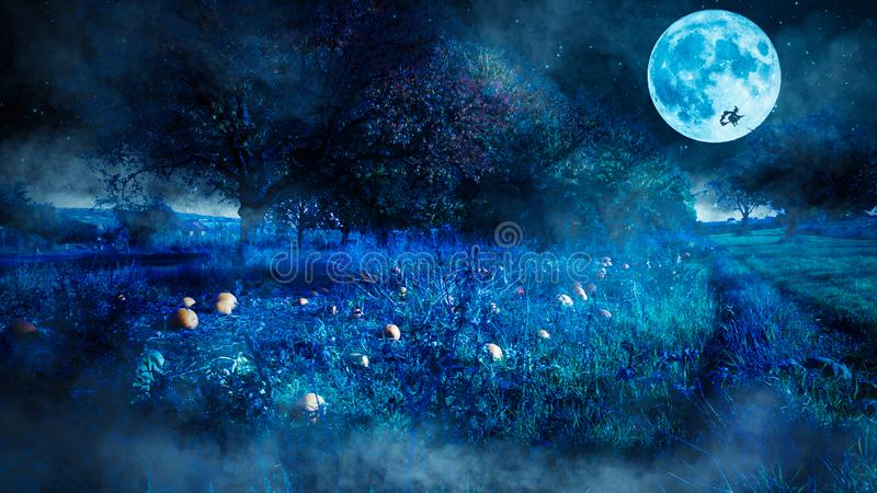 Escena asustadiza de la noche de Halloween con un campo de la calabaza y una bruja que vuela como silueta antes de la Luna Llena fotos de archivo libres de regalías
