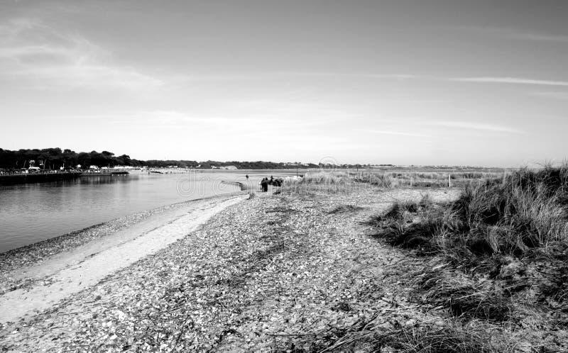Escena blanco y negro de la playa foto de archivo