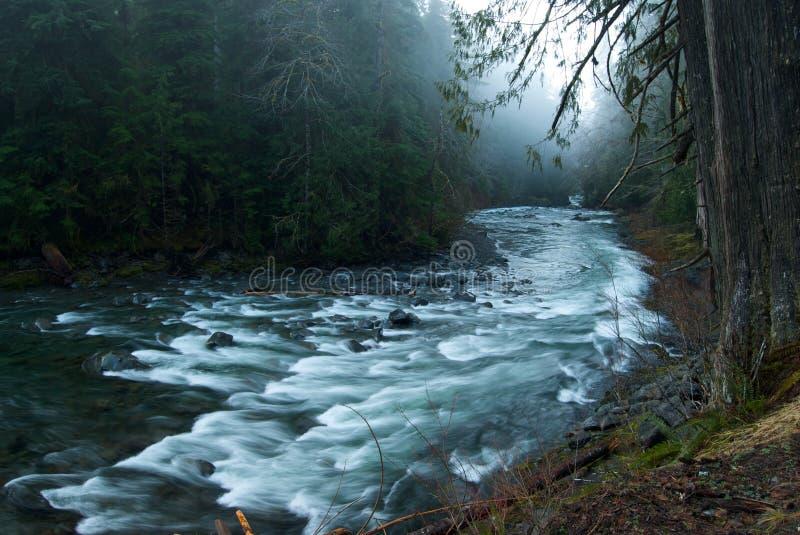 Escena brumosa en el río del solenoide Duc imágenes de archivo libres de regalías