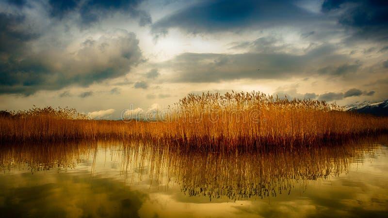 Escena caliente del lago del invierno imagen de archivo libre de regalías