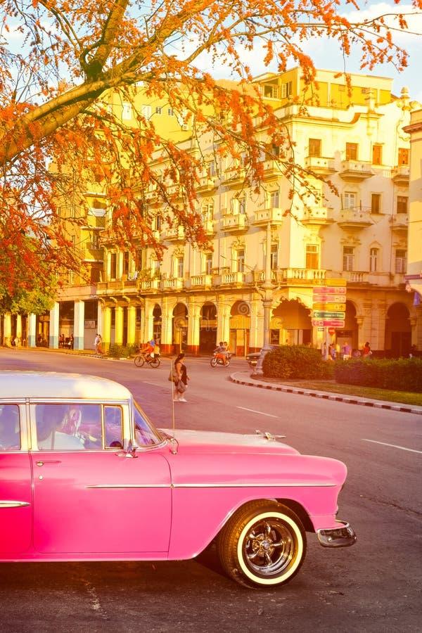 Escena con el coche clásico rosado en la puesta del sol en La Habana imagen de archivo