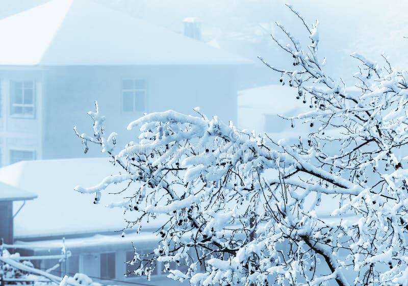 Escena de la esmalte-nieve del hielo en el soporte Lu foto de archivo