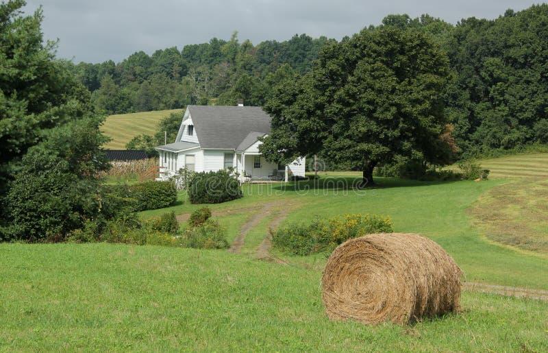 Escena de la granja fotografía de archivo libre de regalías