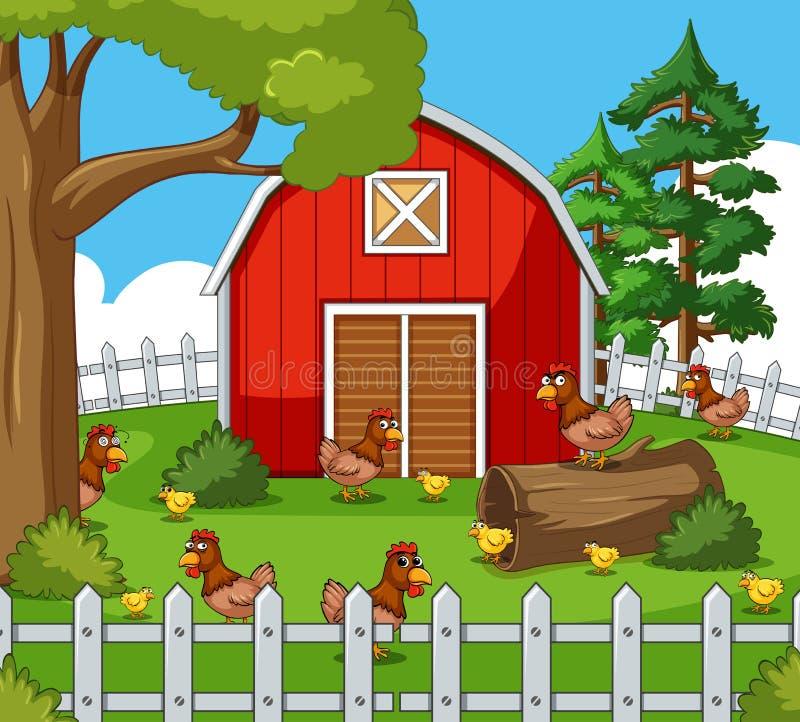 Escena de la granja con muchas gallinas y polluelos libre illustration