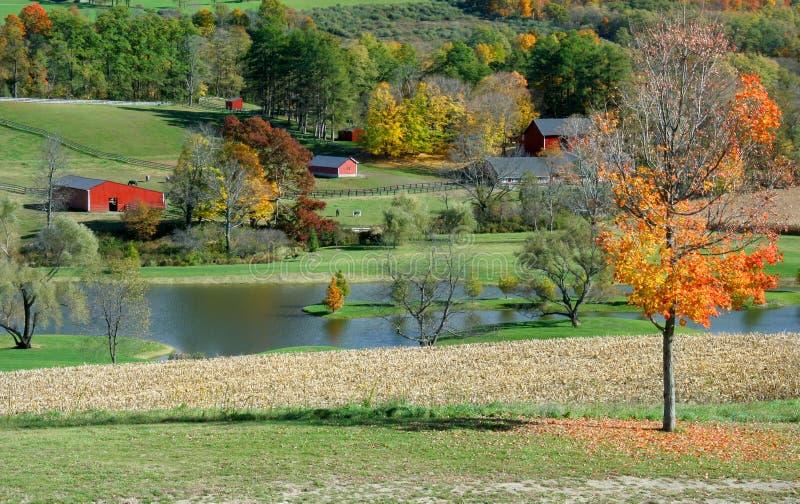 Escena de la granja del otoño fotografía de archivo