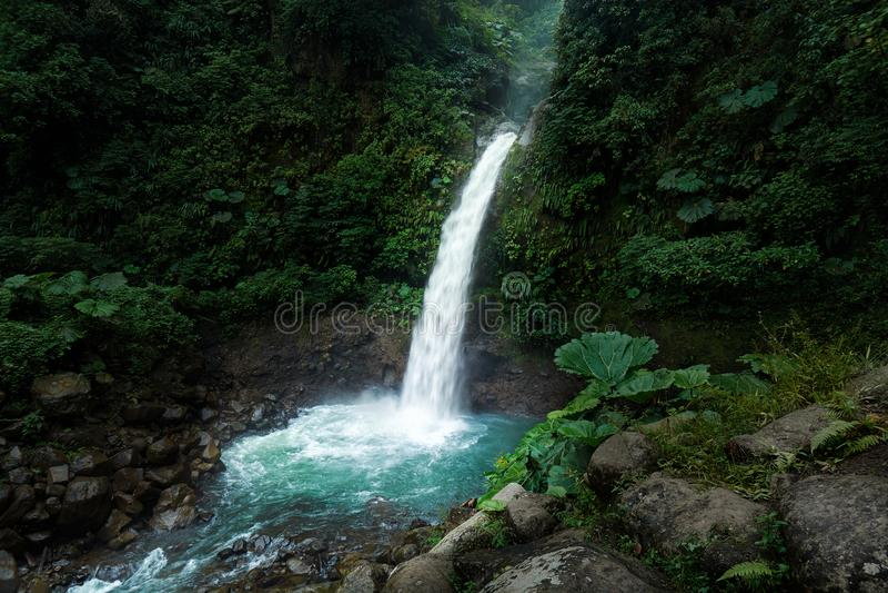 Escena de la mañana de la cascada de La Paz en Alajuela, Costa Rica imagen de archivo libre de regalías