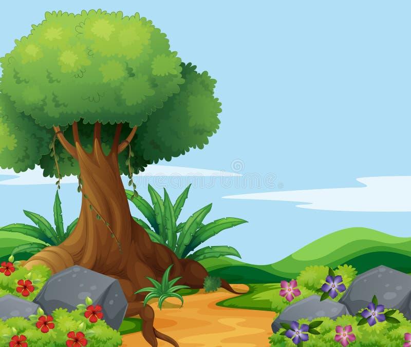 Escena de la naturaleza con el árbol grande a lo largo de la pista stock de ilustración