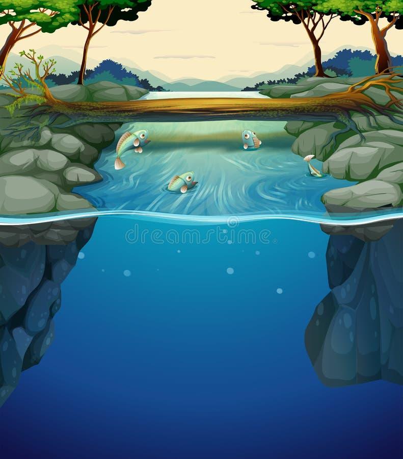 Escena de la naturaleza con los pescados en el río ilustración del vector