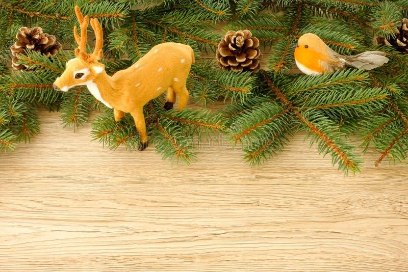 Escena de la Navidad con el reno, Robin Bird, los conos y el abeto Tr del pino foto de archivo libre de regalías