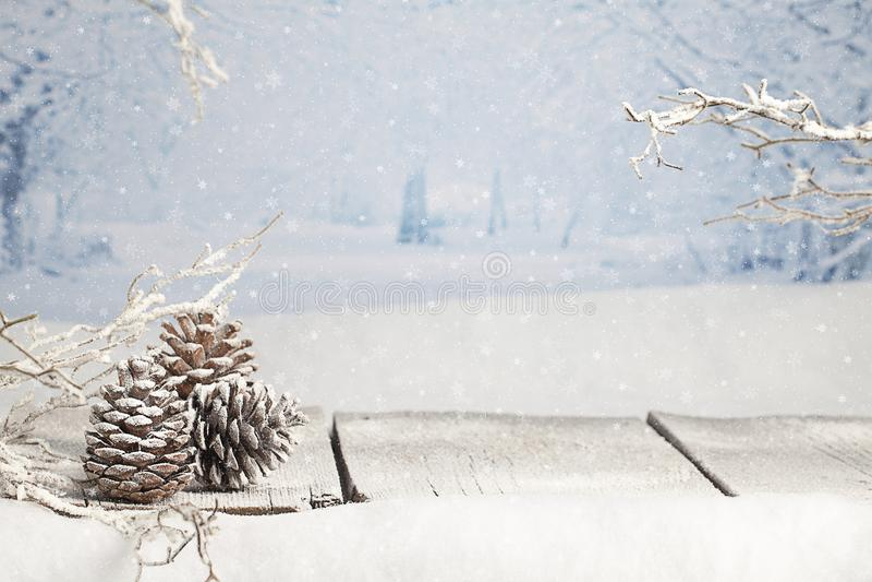 Escena de la Navidad del invierno imagenes de archivo