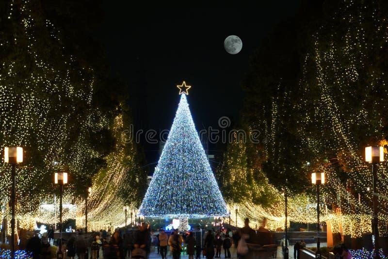 Escena de la Navidad en Tama, Tokio fotos de archivo